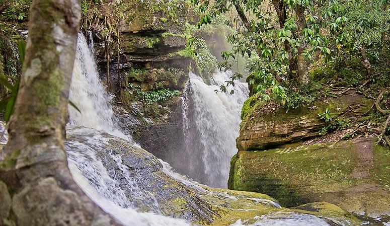 """A Cachoeira do Santuário fica na Reserva Ecológica de mesmo nome e se localiza a 110 km de <a href=""""http://viajeaqui.abril.com.br/cidades/br-am-manaus"""" rel=""""Manaus"""" target=""""_blank"""">Manaus</a>"""