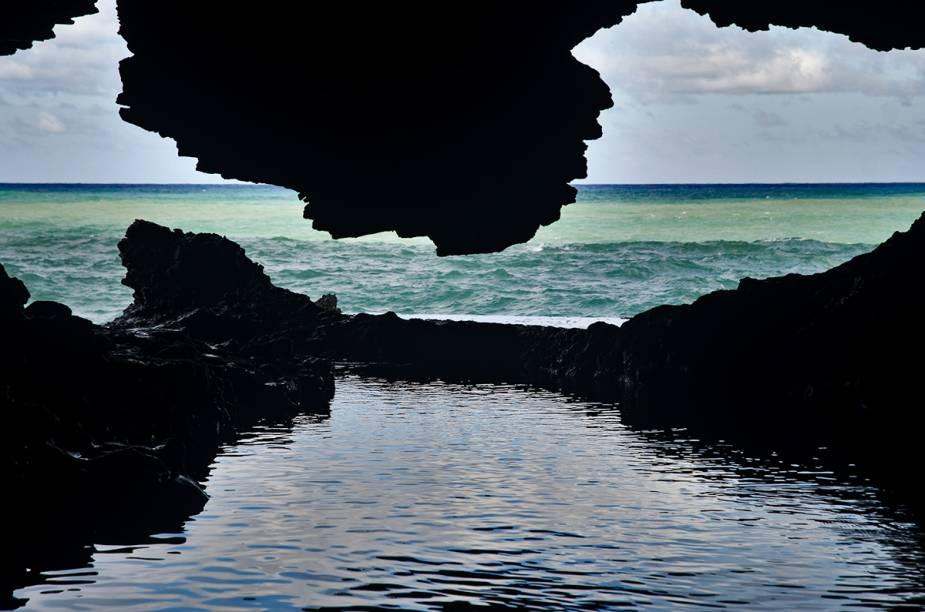"""Animal Flower Cave"""