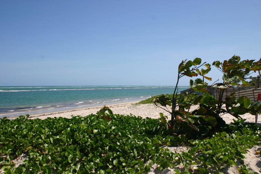 A Praia do Saco da Pedra é mais tranquila que a vizinha Praia do Francês. Há três maneiras de chegar: a pé, de carro ou de barco, mas para chegar a pé, a partir da Praia do Francês, a maré tem de estar baixa