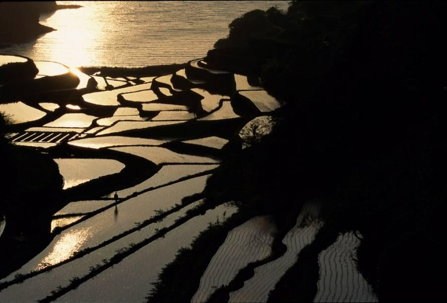 Terraços de plantação de arroz na província de Saga, na ilha de Kyushu