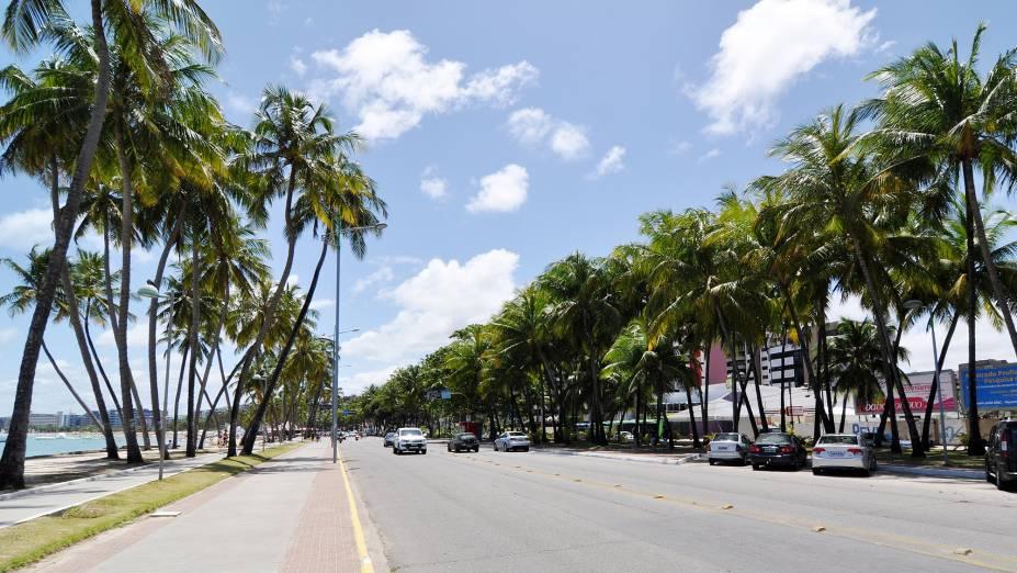 A avenida da praia de Ponta Verde é margeada por coqueiros