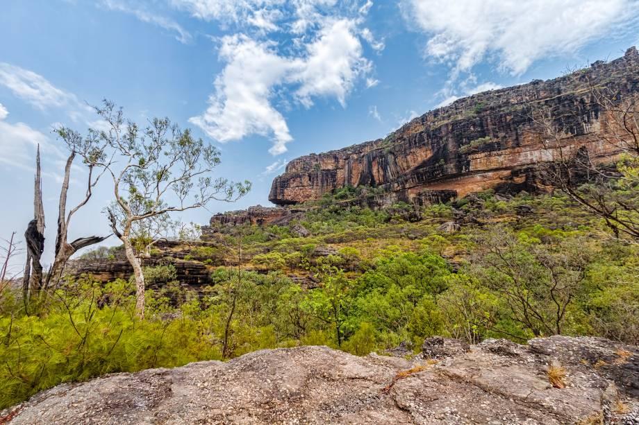 """<a href=""""http://viajeaqui.abril.com.br/estabelecimentos/australia-darwin-atracao-parque-nacional-de-kakadu"""" rel=""""Parque Nacional de Kakadu - Darwin """" target=""""_blank""""><strong>Parque Nacional de Kakadu - Darwin </strong></a>                    A preservação da cultura aborígene combinada às belezas naturais fizeram com que Kakadu fosse considerado patrimônio pela Unesco. Uma vez nas dependências do parque, você se depara com galerias de pinturas aborígenes, pantanais com crocodilos gigantes, paredões avermelhados e espécies raras de plantas e animais"""