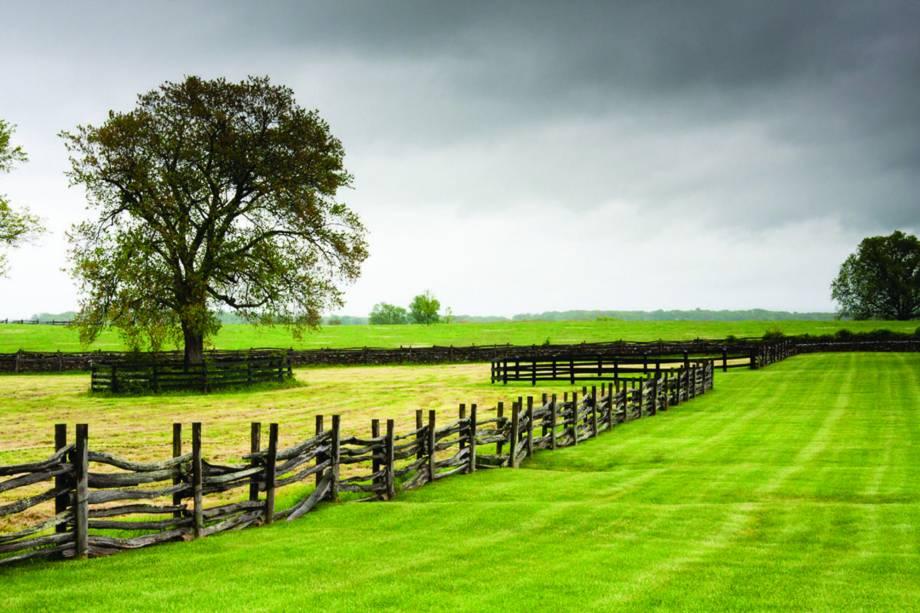O estado da Virginia, nos Estados Unidos, recebe o Historic Garden Week entre 18 e 25 de abril