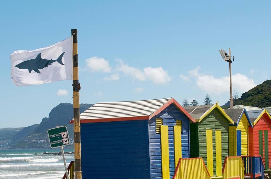 """<a href=""""http://viajeaqui.abril.com.br/cidades/africa-do-sul-cidade-do-cabo"""" rel=""""Cidade do Cabo (África do Sul)"""" target=""""_blank""""><strong>Cidade do Cabo (África do Sul)</strong></a>    A Cidade do Cabo é a cidade mais famosa da África do Sul com méritos. Situado entre dramáticas montanhas e o encontro dos oceanos Atlântico e Índico, o destino oferece uma imensa variedade de paisagens para o turista. As praias localizadas perto de seu centro urbano não estão entre as melhores da África, mas, nos arredores da cidade, os visitantes podem entrar no mar e se divertir com atrações extremamente inusitadas."""