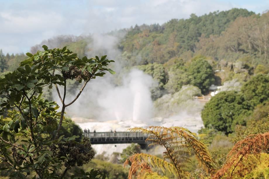"""<strong><em>Parque Te Puia, em<a href=""""http://viajeaqui.abril.com.br/cidades/nova-zelandia-rotorua"""" target=""""_blank"""" rel=""""noopener""""> Rotorua</a></em>-</strong> A intensa atividade vulcânica em Rotorua é responsável pelo vapor eliminado em vários pontos da cidade, que produzem um odor desagradável, e também pelos gêiseres: o mais famoso, Pohutu, chega a lançar jatos de água a 20 metros de altura"""