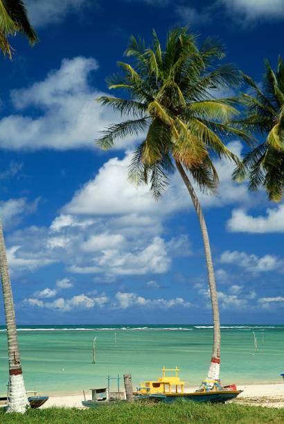 """Com suas praias quase desertas e suas vilas de pescadores, <a href=""""http://viajeaqui.abril.com.br/cidades/br-al-sao-miguel-dos-milagres"""">São Miguel dos Milagres</a> é como um Caribe <em>low profile</em>, muito mais simplicidade e muito menos ostentação. Ali não tem resorts, não tem piscinas com bordas infinitas e não tem luxo. Mas tudo bem. Aliás, tudo ótimo. Um lugar lindão desses não precisa de extras – e fica muito mais acessível para quem não quer torrar um dinheirão de lua de mel numa viagem"""