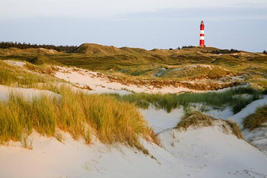 A ilha tem 80 mil metros quadrados de área para <strong>camping de nudismo</strong>, rodeada de dunas de até 32 metros de altura. Longe de ser apenas praia e mar, Amrum tem museus, uma igreja e um farol que podem ser visitados. Ela é banhada pelo <strong>Mar Frísio</strong>, declarado Patrimônio Mundial pela Unesco, e a praia nudista <strong>Kniepsand</strong> fica próxima ao acampamento