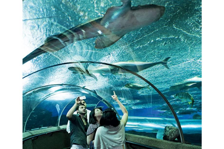 Aquário do Marine Life Park