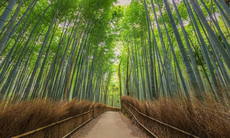 """<strong>6. Arashiyama Forest, <a href=""""http://viajeaqui.abril.com.br/cidades/japao-kyoto"""" rel=""""Kyoto"""" target=""""_self"""">Kyoto</a>, <a href=""""http://viajeaqui.abril.com.br/paises/japao"""" rel=""""Japão"""" target=""""_self"""">Japão</a></strong>                            Caminhar pelas trilhas dessa linda floresta japonesa é um programa perfeito para fazer a dois, com árvores de bambu formando um cenário impressionante, que só melhora com o pôr do Sol. A planta, aliás, tem uma relação muito próxima aos japoneses há séculos: a cultura desse povo a aponta como símbolo de força. Uma de suas lendas fala sobre um cortador de bambu, que teria encontrado uma criança entre seus caules durante um dia de trabalho. No lugar onde a planta foi retirada, cresceu ouro – e a família adotiva da menina prosperou. Com o passar dos anos, a beleza da jovem cativou um imperador, que desejava desposá-la. No entanto, descobriu-se que ela era, na verdade, a Princesa Kaguya – enviada pelos povos da Lua para cumprir uma missão temporária na Terra. Sua partida deixou o imperador tão desolado que ele teria abdicado de sua imortalidade na esperança de reencontrá-la algum dia. Mais fofo, impossível."""