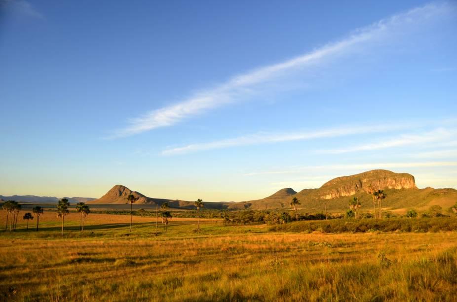 """<strong>5. Complexo de áreas protegidas do Cerrado: parques nacionais da<a href=""""http://viajeaqui.abril.com.br/cidades/br-go-chapada-dos-veadeiros"""" rel=""""Chapado dos Veadeiros"""" target=""""_blank"""">Chapada dos Veadeiros</a>e das<a href=""""http://viajeaqui.abril.com.br/estabelecimentos/br-go-chapadao-do-ceu-atracao-parque-nacional-das-emas"""" rel=""""Emas"""" target=""""_blank"""">Emas</a>,<a href=""""http://viajeaqui.abril.com.br/estados/br-goias"""" rel=""""Goiás"""" target=""""_blank"""">Goiás</a></strong>As duas regiões tombadas pela Unesco em 2001 contemplam esses dois parques nacionais, cujas riquezas incluem a mais rica e antiga variedade de ecossistemas tropicais, que inclui até 400 espécies de plantas por hectare. Por aqui, diversas espécies de mamíferos, específicas do Cerrado brasileiro, podem ser encontradas, como o tamanduá-bandeira, o tatu canastra, o lobo-guará e o veado campeiro. AChapada dos Veadeirosinclui uma quantidade imensa de paredões de pedra, vegetações, rios e cachoeiras. OParque Nacional das Emas, por outro lado, possui espécies raras de animais em risco de extinção, entre aves e mamíferos como a codorna-mineira e a onça-parda"""