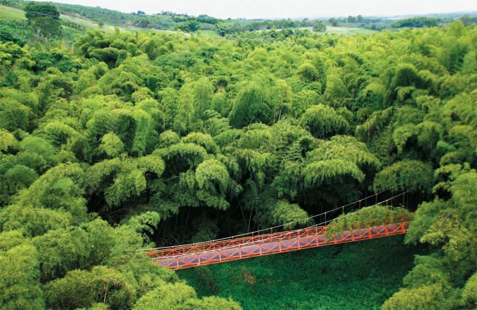 A imensa área verde do <strong>Parque Nacional del Café</strong>, perto de Armenia
