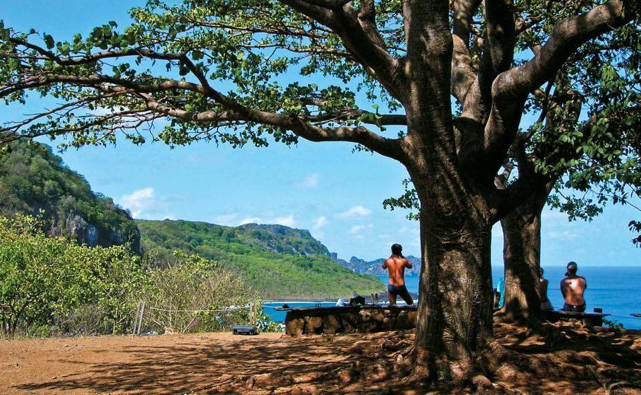 """<a href=""""http://viajeaqui.abril.com.br/estabelecimentos/br-pe-fernando-de-noronha-atracao-baia-dos-golfinhos""""><strong>Mirante da Baía dos Golfinhos</strong></a>Para cá você pode vir por conta própria (ônibus, táxi ou veículo alugado). Uma trilha curta (1 km) a partir do estacionamento da Baía do Sancho leva até o mirante da Baía dos Golfinhos. É preciso acordar cedo para observar os saltos acrobáticos dos golfinhos-rotadores, pois o melhor horário é das 6h às 7h30. Mas não se empolgue demais: você vai avistá-los bem de longe. Binóculos são necessários. Leve os seus ou pegue emprestado dos biólogos de plantão, caso eles estejam por lá."""