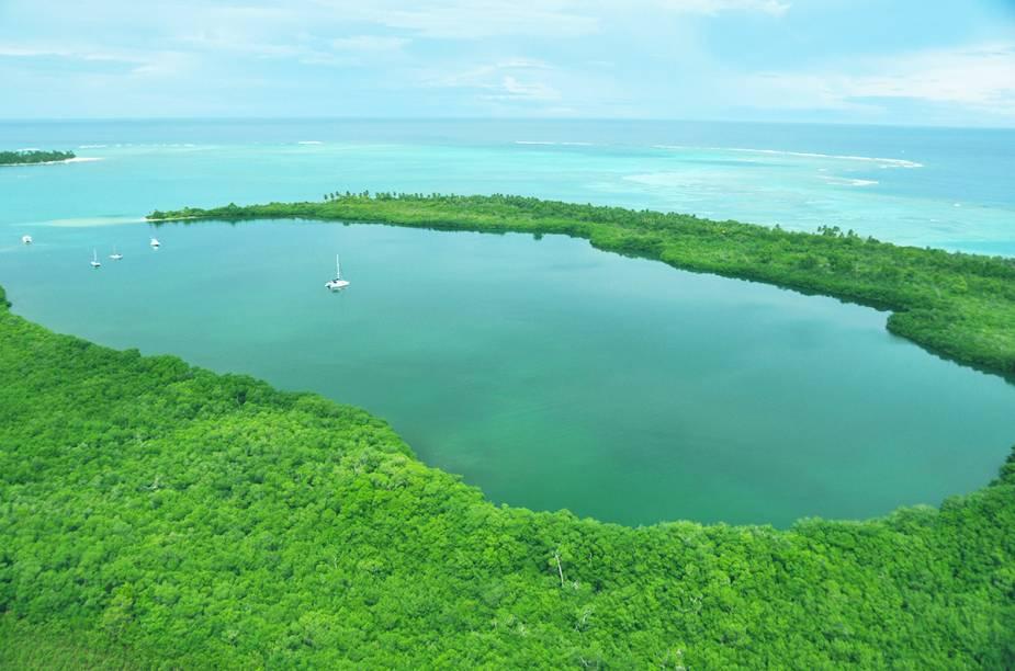 """""""Buccoo Reef"""" e """"Bon Accord Lagoon"""" (Recifes Bucco e Lagoa Bon Accord), em Tobago, são conhecidas pelo extenso ecossistema de recifes, corais, algas marinhas e manguezais. Os recifes ocupam uma área de 7 km2. ."""