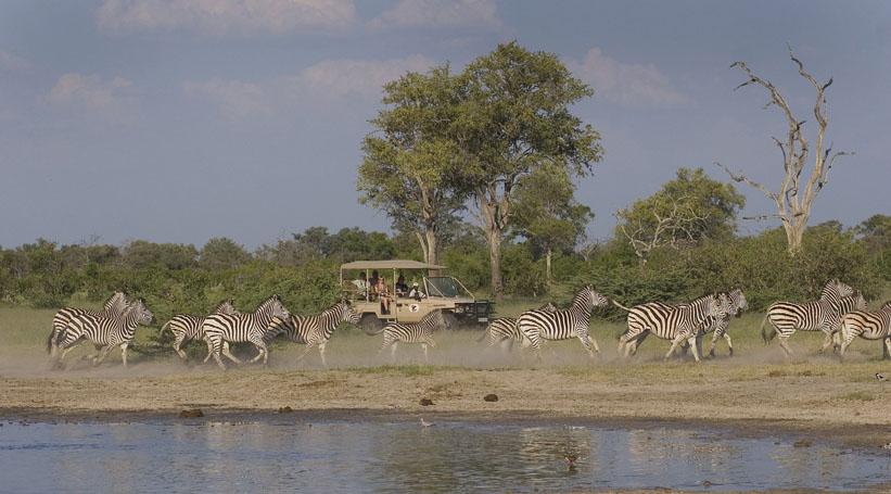 Safári na região do delta do Okavango