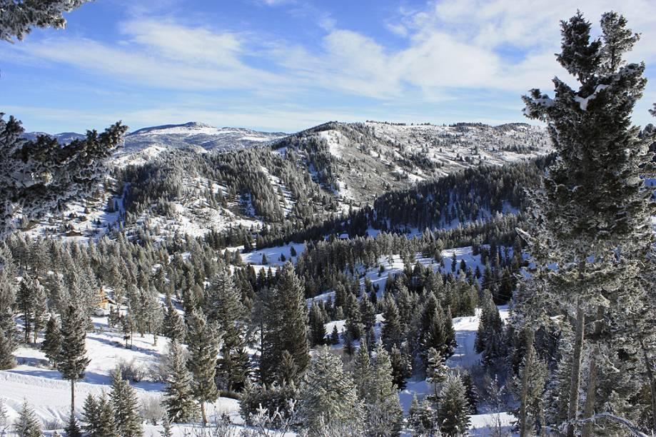 <strong>Bozeman, Montana, Estados Unidos</strong><br />        Por não ser uma cidade voltada para o esqui, estadias caras e restaurantes renomados são excessão. As atrações de Bozeman são as duas selvagens montanhas de Montana. Bridger Bowl é uma área de esqui sem fins lucrativos a 20 minutos da cidade, e Big Sky Resort, gigantesca, é uma das maiores dos Estados Unidos. Iniciantes e intermediários têm diversas opções a seu dispor, Big Sky é a deluxe e Bridger é a <em>low-cost</em>. A 60 minutos de carro, o Yellowstone National Park, além do esqui, é rico para se observar a natureza