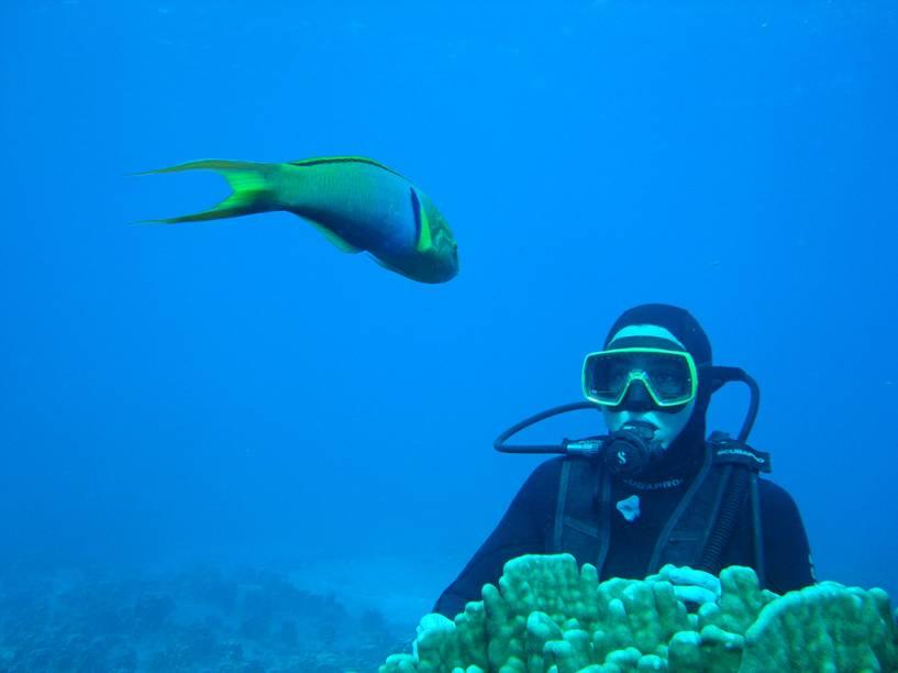 Apesar dos moais e vulcões serem a grande atração na Ilha de Páscoa, aqui há também bons mergulhos