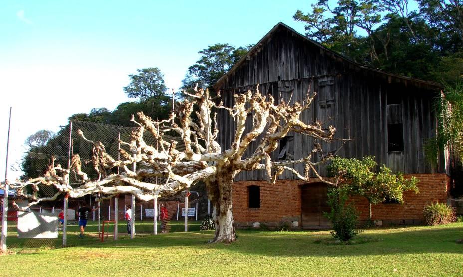 """<strong><a href=""""http://viajeaqui.abril.com.br/cidades/br-mg-sao-joao-del-rei"""" rel=""""16. São João Del Rei (MG)"""" target=""""_self"""">16. São João Del Rei (MG)</a></strong>                        Igrejas barrocas também conservam seu patrimônio, como a <strong><a href=""""http://viajeaqui.abril.com.br/estabelecimentos/br-mg-sao-joao-del-rei-atracao-igreja-sao-francisco-de-assis"""" rel=""""Igreja de São Francisco de Assis """" target=""""_self"""">Igreja de São Francisco de Assis</a></strong>(foto) e a <a href=""""http://viajeaqui.abril.com.br/estabelecimentos/br-mg-sao-joao-del-rei-atracao-catedral-n-s-do-pilar"""" rel=""""Catedral Nossa Senhora do Pilar"""" target=""""_self"""">Catedral Nossa Senhora do Pilar</a>"""