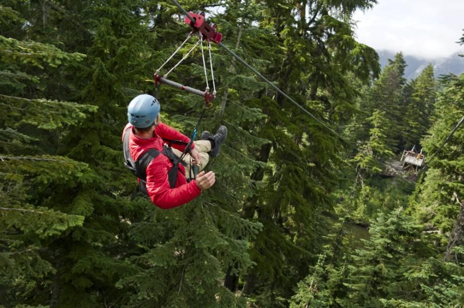 Grouse Mountain Ziplines