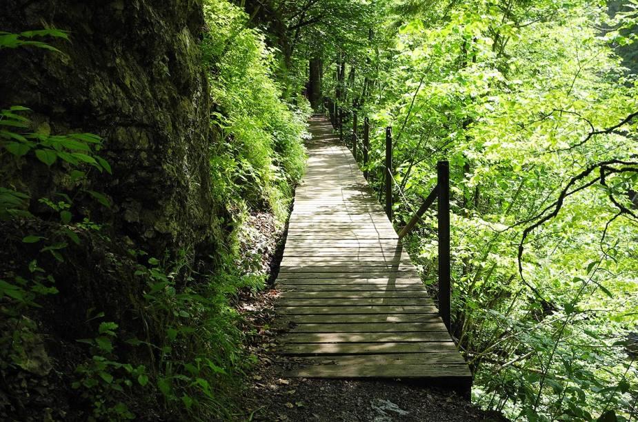"""<strong>Bike Park Leogang, <a href=""""http://viajeaqui.abril.com.br/paises/austria"""" target=""""_blank"""" rel=""""noopener"""">Áustria</a></strong> Para quem não está disposto a encarar os riscos de pedalar por desfiladeiros, o país tem o Bike Park Leogang, em Salzburg, a cerca de 170 quilômetros de Mitterbach. A atração permite a ciclistas com diferentes níveis de habilidade pratiquem mountain bike em rampas e obstáculos. A trilha mais popular é a Speedster, com 2,3 quilômetros de extensão em declive. A primavera, entre abril e junho, é a melhor estação para visitar o país."""