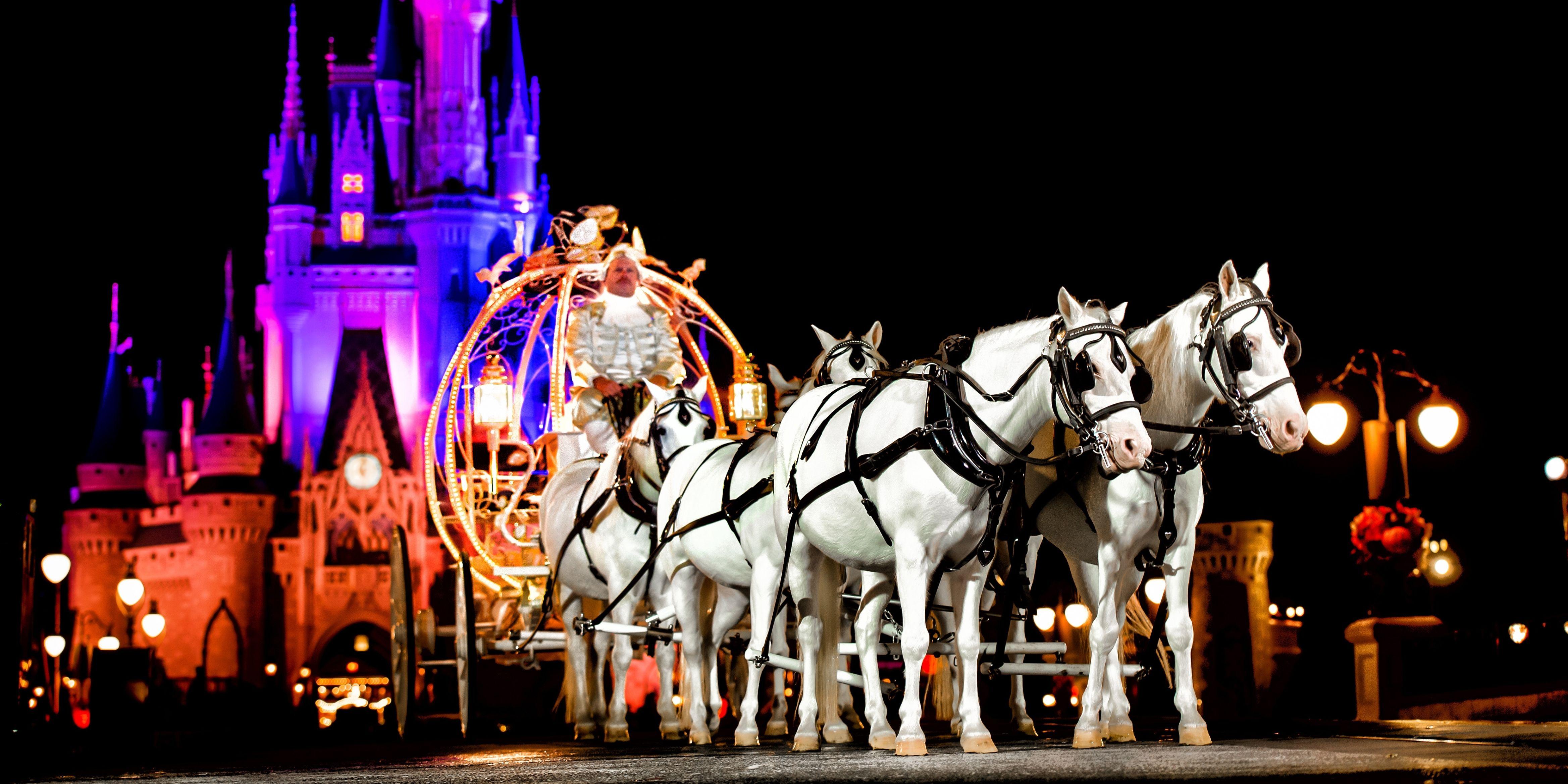 Dá para chegar de carruagem e tudo no casório de conto de fadas da Disney de Orlando