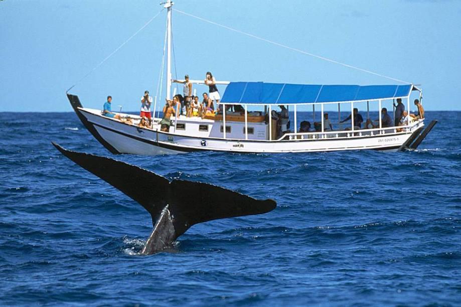 """<strong>9. <a href=""""/cidades/br-ba-cumuruxatiba"""" target=""""_blank"""">Cumuruxatiba</a> (3 dias)</strong>O mar esverdeado, as falésias coloridas, a fileira de coqueiros: a paz mora em Cumuru, cheia de pousadas charmosas. De julho a novembro dá para embarcar para observar baleias-jubarte"""