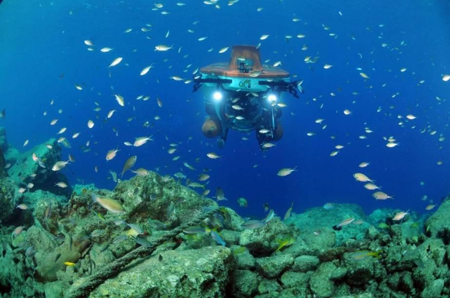 Mergulho mais que autõnomo em Curaçao, onde os recifes de corais garantem ótimas experiências
