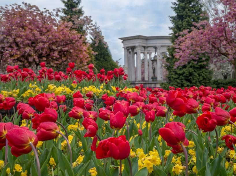 Cardiff é considerada uma das cidades mais verdes do Reino Unido. Por aqui, há mais de 300 parques e jardins graciosos e bem conservados para atrair o visitante