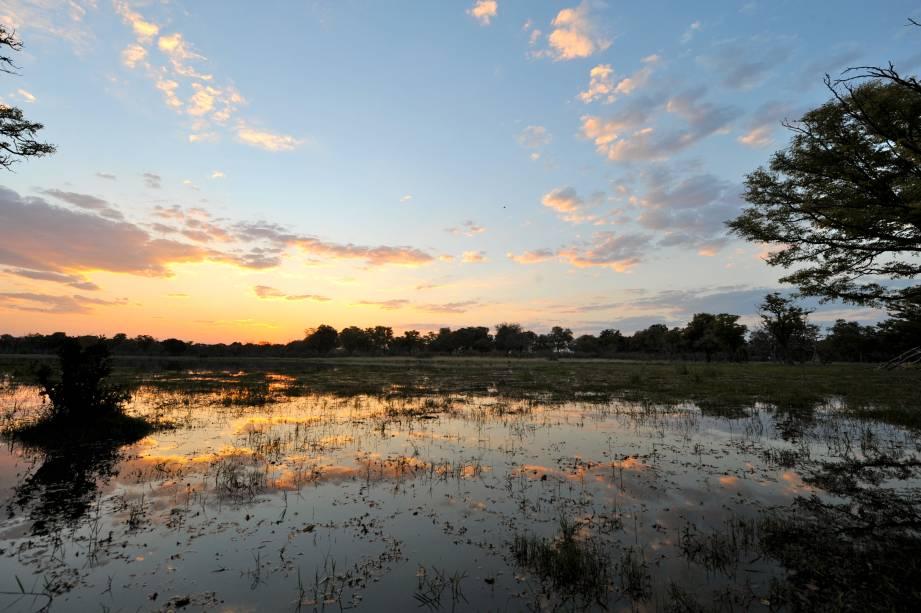 Por do sol no delta do Okavango, Botsuana, África