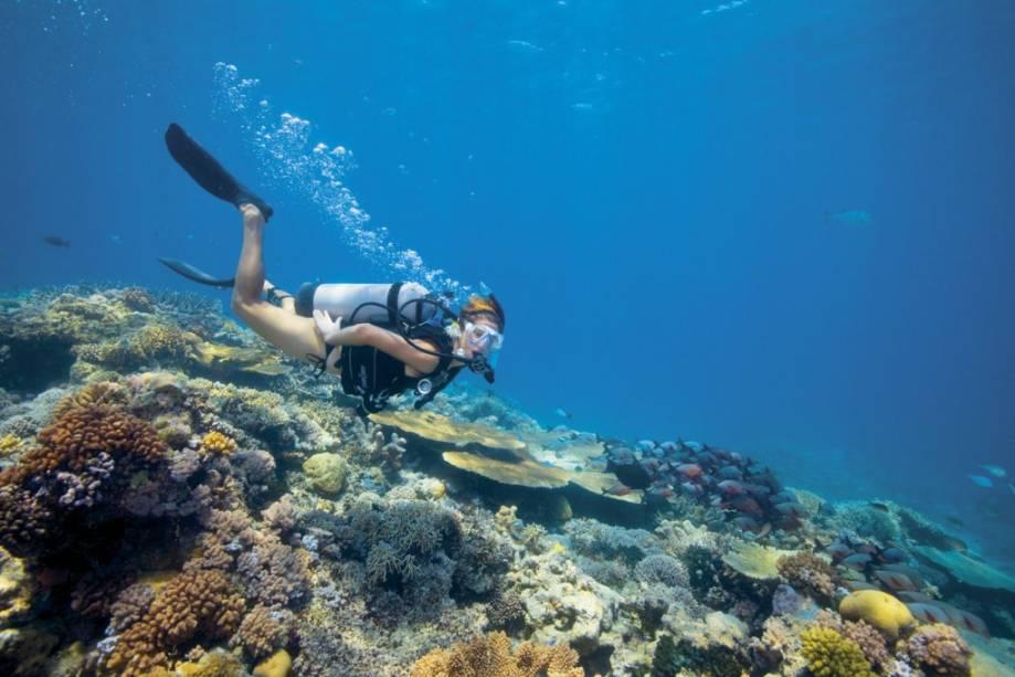 O mergulho em Lizard Island, ao norte de Cairns, é uma das atividades para quem se hospeda em hotéis dos Luxury Lodges of Australia