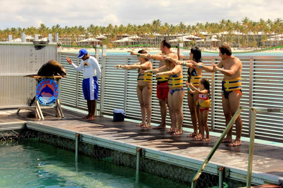 Show com leões-marinhos no Dolphin Island Park