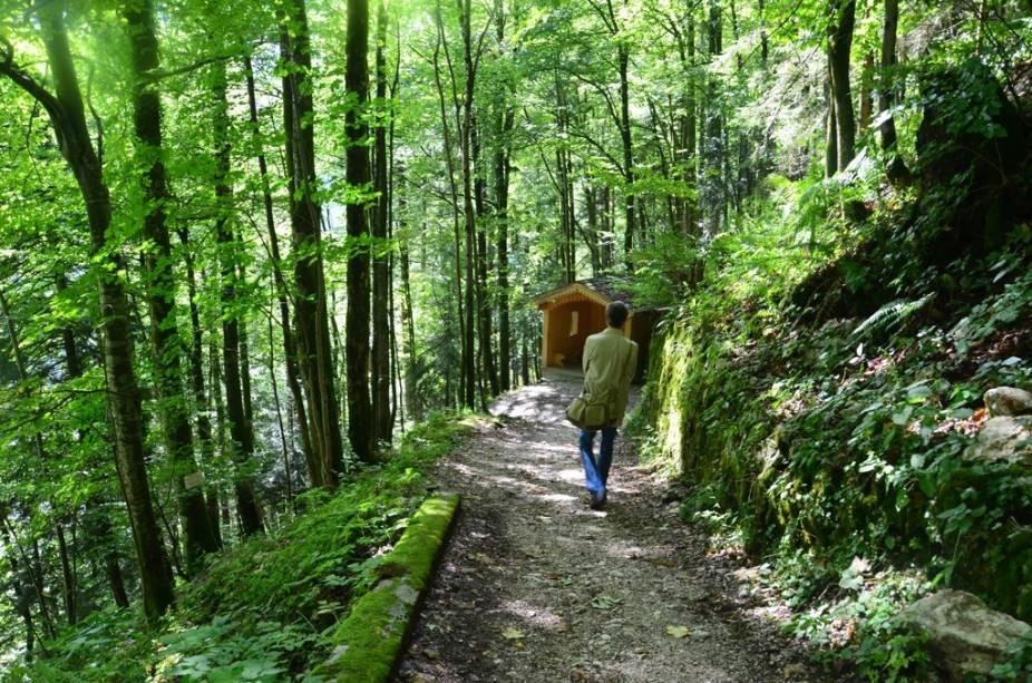 Para ascender às minas de sal, o recomendável é usar o funicular, mas para voltar à Hallstatt, nada como caminhar pelas duas rotas montanha abaixo. Além da agradável vegetação que as cobre, inúmeras sinalizações explicam a história da região, a indústria do sal, as ligações com os Habsburgos e as razões pelas quais a área é listada como patrimônio da humanidade pela Unesco