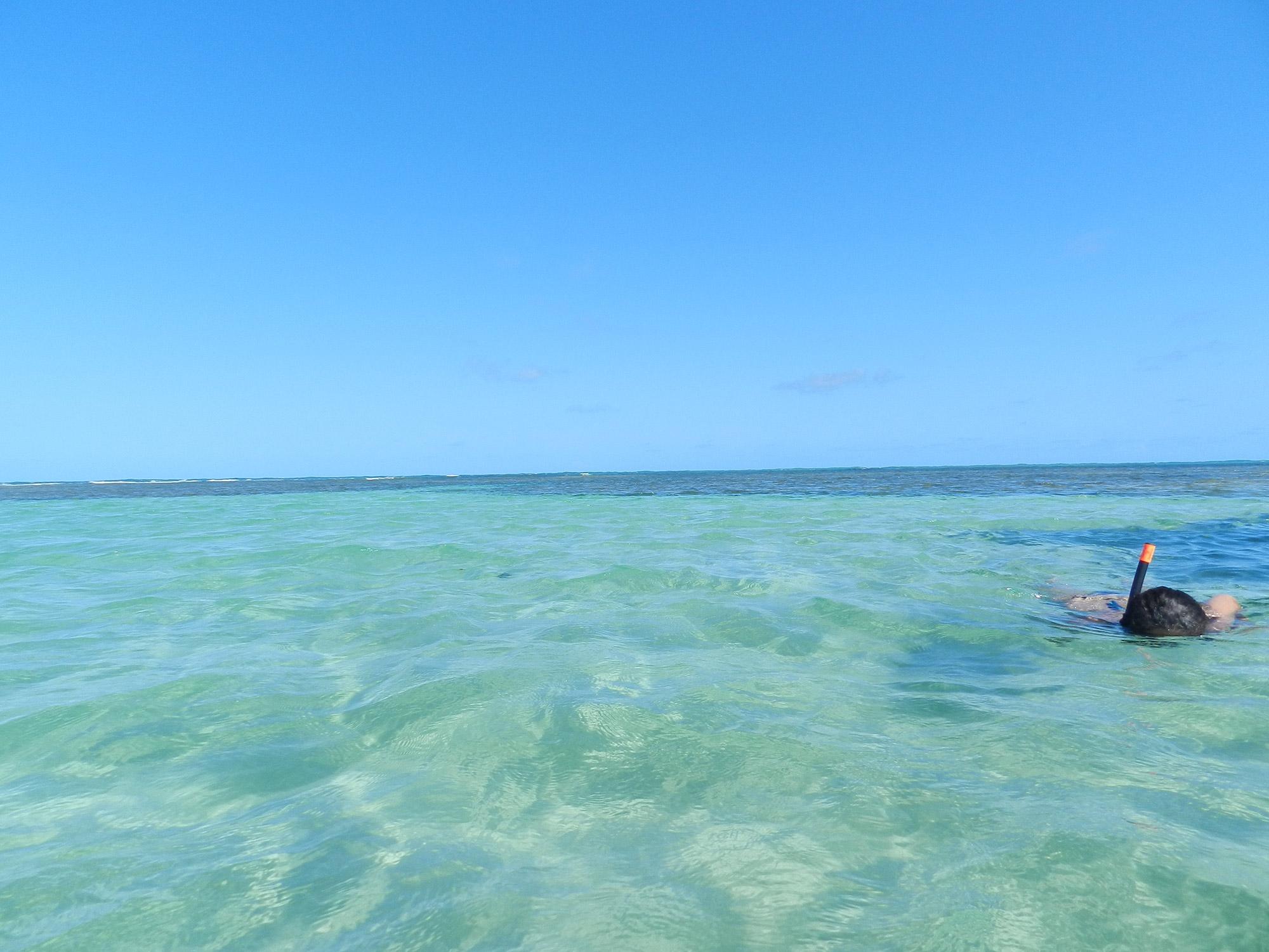 Piscinas naturais da Praia do Patacho (AL)