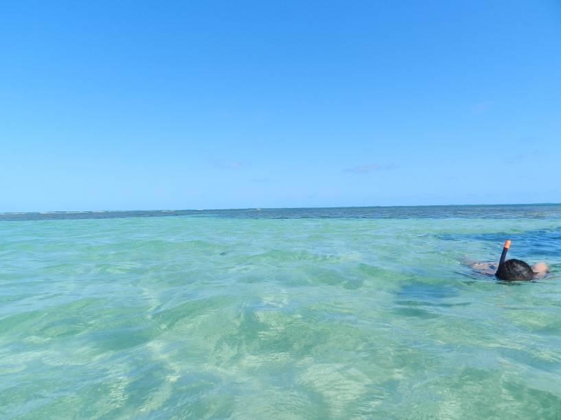 Snorkel é ferramenta indispensável para explorar as piscinas do Patacho, só tome cuidado com os ouriços-do-mar