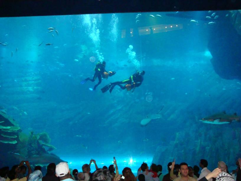 """<strong>Aquário de Dubai, Emirados Árabes Unidos</strong>Com recintos com capacidade para 10 milhões de litros d'água, o <a href=""""http://viajeaqui.abril.com.br/estabelecimentos/emirados-arabes-unidos-dubai-atracao-the-dubai-aquarium-aquario-de-dubai"""" rel=""""Aquário de Dubai"""" target=""""_blank"""">Aquário de Dubai</a> impressiona. Peixes de todas as formas e cores, estrelas do mar, águas-vivas e lagostas são alguns dos 33 mil animais que nadam pelos enormes tanques que chegam a 11 metros de altura. É possível fazer passeios de barco ou mergulho com tubarões"""