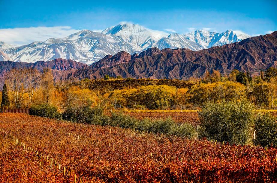 Vinhedos do Entre Cielos Wine Hotel, um dos melhores upgrades que você poderá se dar em uma viagem à Mendoza