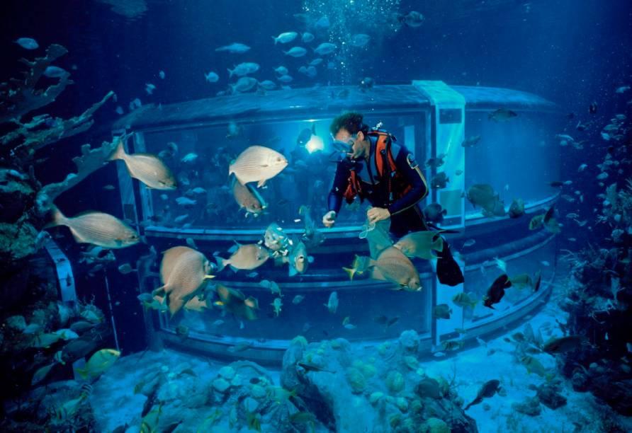 The Sea with Nemo and Friends, uma das atrações do Epcot Center