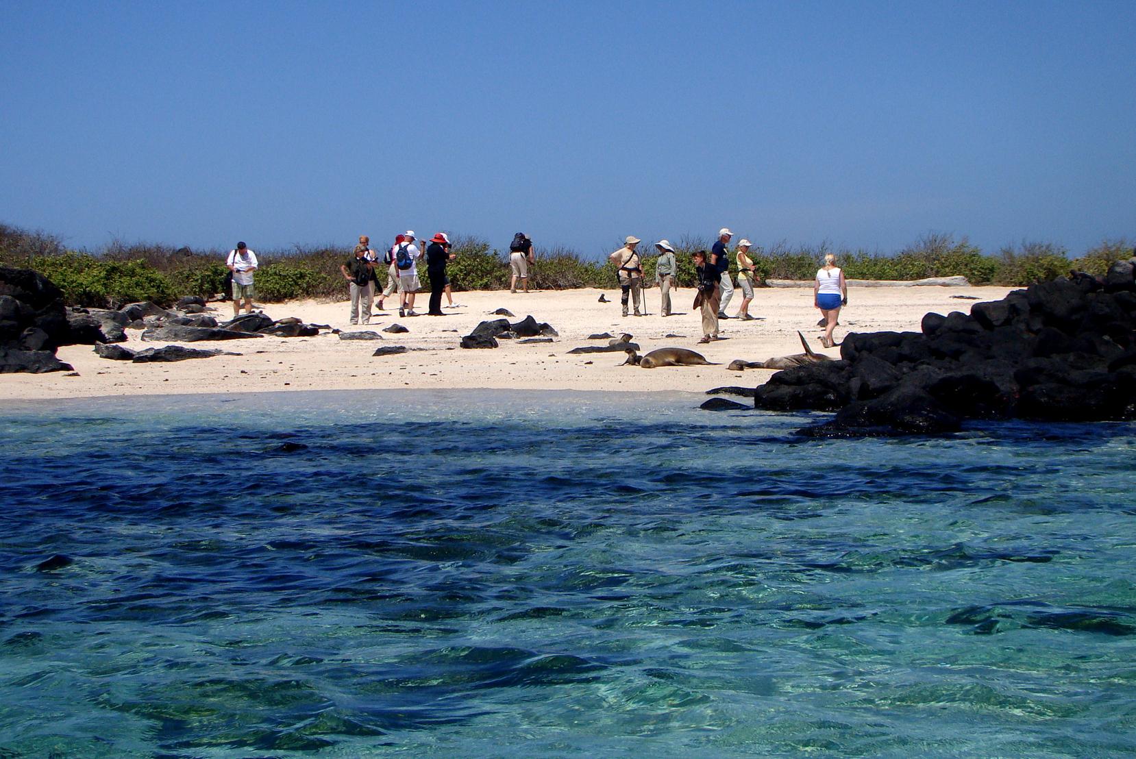 Turistas tiram fotos com leões marinhos em praia de Española, em Galápagos, Equador