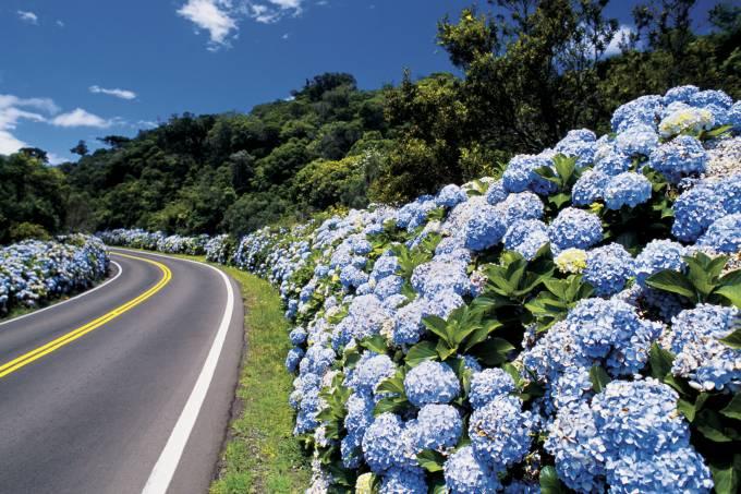 Paisagem da estrada que vai para Gramado, Rio Grande do Sul