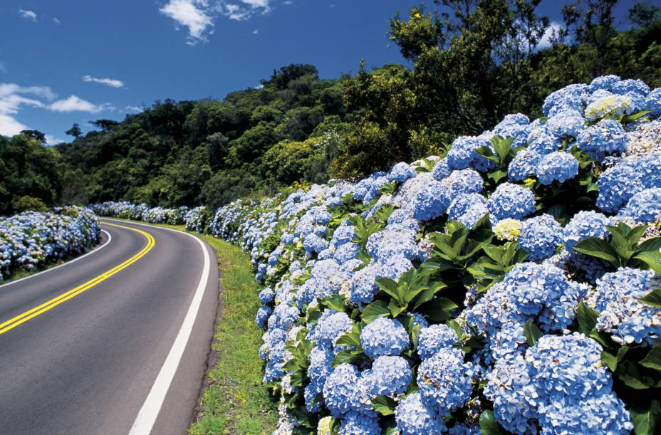 """As paisagens das estradas que conduzem até a cidade de <a href=""""http://viajeaqui.abril.com.br/cidades/br-rs-gramado"""" rel=""""Gramado"""" target=""""_self"""">Gramado</a> (RS) são super charmosas. A impressão que fica é a de estar na Europa"""