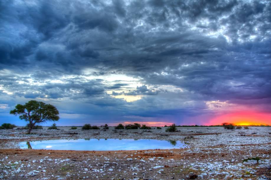 """<strong><a href=""""https://www.etoshanationalpark.org/"""" target=""""_blank"""" rel=""""noopener"""">Parque Nacional Etosha</a>, Namíbia</strong> O parque funciona como um safári, cujo principal objetivo é a preservação da vida dos animais selvagens da região. Por aqui, é possível encontrar espécies de mamíferos como elefantes, zebras, rinocerontes e até mesmo leões <em><a href=""""https://www.booking.com/searchresults.pt-br.html?aid=332455&sid=b6bf542626b1a2c7a9951e44506f270a&sb=1&src=searchresults&src_elem=sb&error_url=https%3A%2F%2Fwww.booking.com%2Fsearchresults.pt-br.html%3Faid%3D332455%3Bsid%3Db6bf542626b1a2c7a9951e44506f270a%3Btmpl%3Dsearchresults%3Bac_click_type%3Dg%3Bclass_interval%3D1%3Bdtdisc%3D0%3Bfrom_sf%3D1%3Bgroup_adults%3D2%3Bgroup_children%3D0%3Binac%3D0%3Bindex_postcard%3D0%3Blabel_click%3Dundef%3Bno_rooms%3D1%3Boffset%3D0%3Bplace_id%3DChIJr3kkwy1BkEYRnX9qzybnZXA%3Bplace_id_lat%3D61.1879953%3Bplace_id_lon%3D26.9023637%3Bpostcard%3D0%3Braw_dest_type%3Dlandmark%3Broom1%3DA%252CA%3Bsb_price_type%3Dtotal%3Bsearch_selected%3D1%3Bshw_aparth%3D1%3Bslp_r_match%3D0%3Bsrc%3Dsearchresults%3Bsrc_elem%3Dsb%3Bsrpvid%3D1f4d81c20e6d0187%3Bss%3DRepovesi%2520National%2520Park%252C%2520Kouvola%252C%2520Finland%3Bss_all%3D0%3Bss_raw%3DRepovesi%2520National%2520Park%3Bssb%3Dempty%3Bsshis%3D0%3Bssne%3DGauja%2520National%2520Park%3Bssne_untouched%3DGauja%2520National%2520Park%3Btop_ufis%3D1%26%3B&ss=Etosha+National+Park%2C+Nam%C3%ADbia&is_ski_area=&ssne=Repovesi+National+Park%2C+Kouvola%2C+Finland&ssne_untouched=Repovesi+National+Park%2C+Kouvola%2C+Finland&checkin_monthday=&checkin_month=&checkin_year=&checkout_monthday=&checkout_month=&checkout_year=&group_adults=2&group_children=0&no_rooms=1&from_sf=1&ss_raw=Etosha+national+park&ac_position=0&ac_langcode=xb&ac_click_type=b&dest_id=14665&dest_type=region&search_pageview_id=1f4d81c20e6d0187&search_selected=true&region_type=free_region&search_pageview_id=1f4d81c20e6d0187&ac_suggestion_list_length=5&ac_suggestion_theme_list_length=0"""" target="""