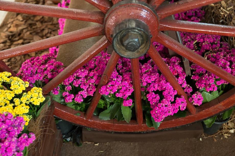 A atual edição do evento marca o retorno de flores de jardim como tendência do setor