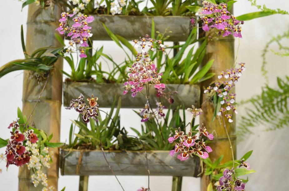 Para atender o público consumidor,as flores, plantas e morangos são comercializados diretamente dos produtores, com produtos frescos e selecionados