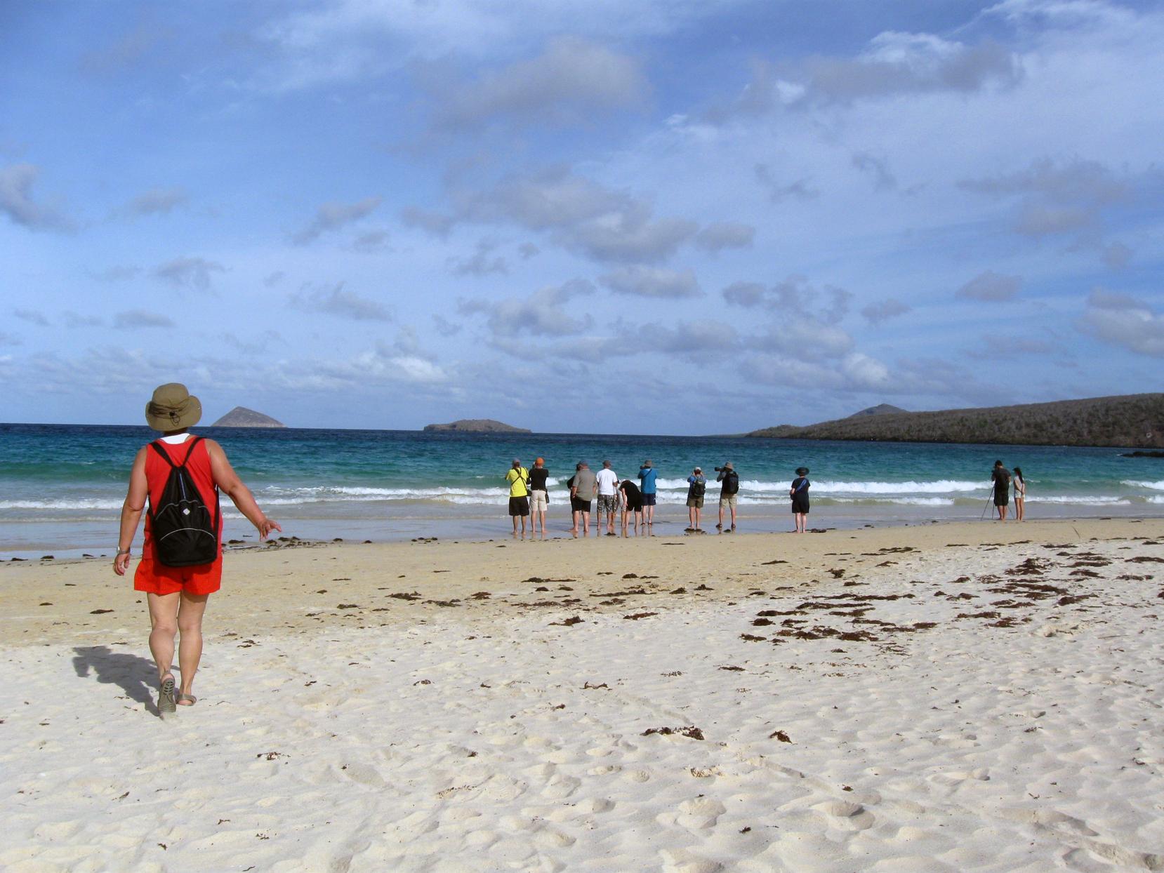 Turistas observam tartarugas marinhas em praia de Floreana, em Galápagos (Equador)