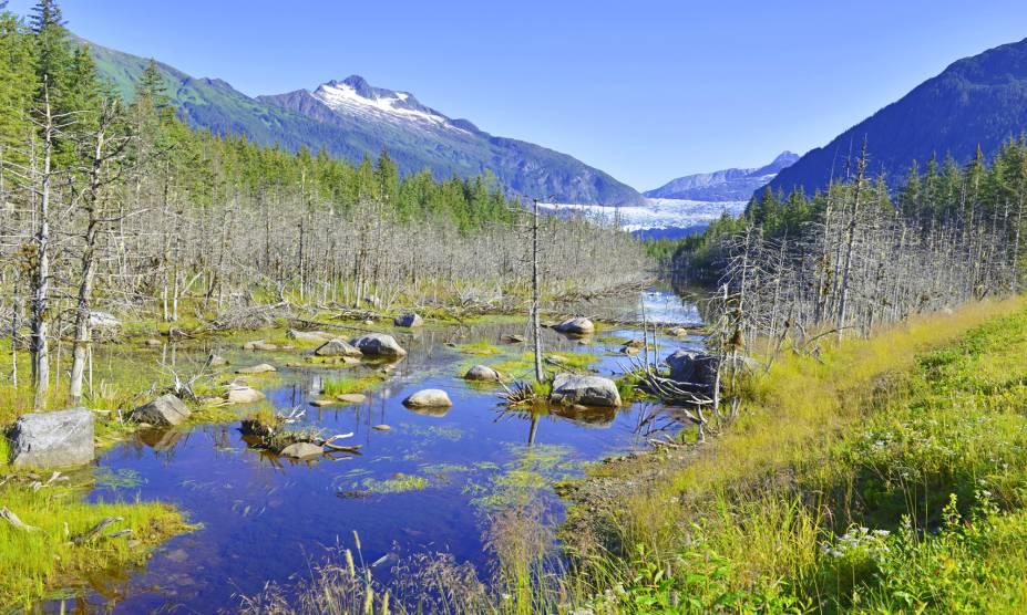"""A <strong>Floresta Nacional Tongass</strong> é considerada a maior dos <a href=""""http://viajeaqui.abril.com.br/paises/estados-unidos"""" rel=""""Estados Unidos"""" target=""""_self"""">Estados Unidos</a>, com um a extensão de 70 mil km². A vida selvagem é marcante na reserva, com a presença de ursos, águias e outras espécies entre seus caminhos    <em><a href=""""http://www.booking.com/city/us/ketchikan.pt-br.html?sid=5b28d827ef00573fdd3b49a282e323ef;dcid=1?aid=332455&label=viagemabril-paisagens-do-alasca"""" rel=""""Veja preços de hotéis próximos à Floresta Nacional Tongass no Booking.com"""" target=""""_blank"""">Veja preços de hotéis próximos à Floresta Nacional Tongass no Booking.com</a></em>"""