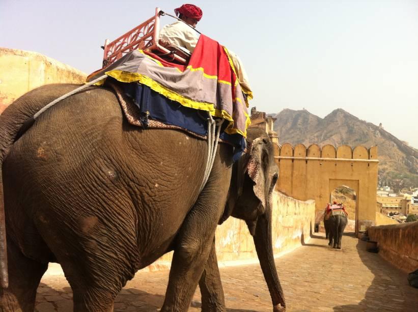 """<strong>6. Rajastão</strong>            Localizado próximo ao deserto, o estado do Rajastão é o estereótipo da Índia. Encantadores de serpentes, elefantes e camelos são figuras comuns nas ruas das cidades de <a href=""""http://viajeaqui.abril.com.br/cidades/india-jaipur"""" rel=""""Jaipur"""" target=""""_self"""">Jaipur</a>, Jaisalmer e Johdpur."""