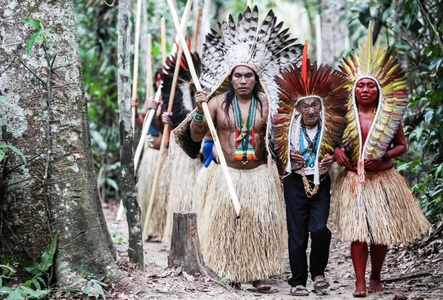 """<a href=""""http://viajeaqui.abril.com.br/materias/indios-yawanawas-do-acre-recebem-turistas-para-vivencia-espiritual-na-amazonia"""" target=""""_self""""><strong>Aldeia Mutum (AC)</strong></a> Localizada na Amazônia Acriana, a Aldeia Mutum pertence à tribo indígena dos Yawanawás. Uma vez por ano a aldeia recebe turistas para a Festa Mariri Yawanawá, cuja programação é dedicada à cura, dança, música e manifestações culturais e espirituais. Os turistas que se hospedam na aldeia Mutum são """"convidados"""", já que o povo indígena tem autonomia sobre sua terra"""