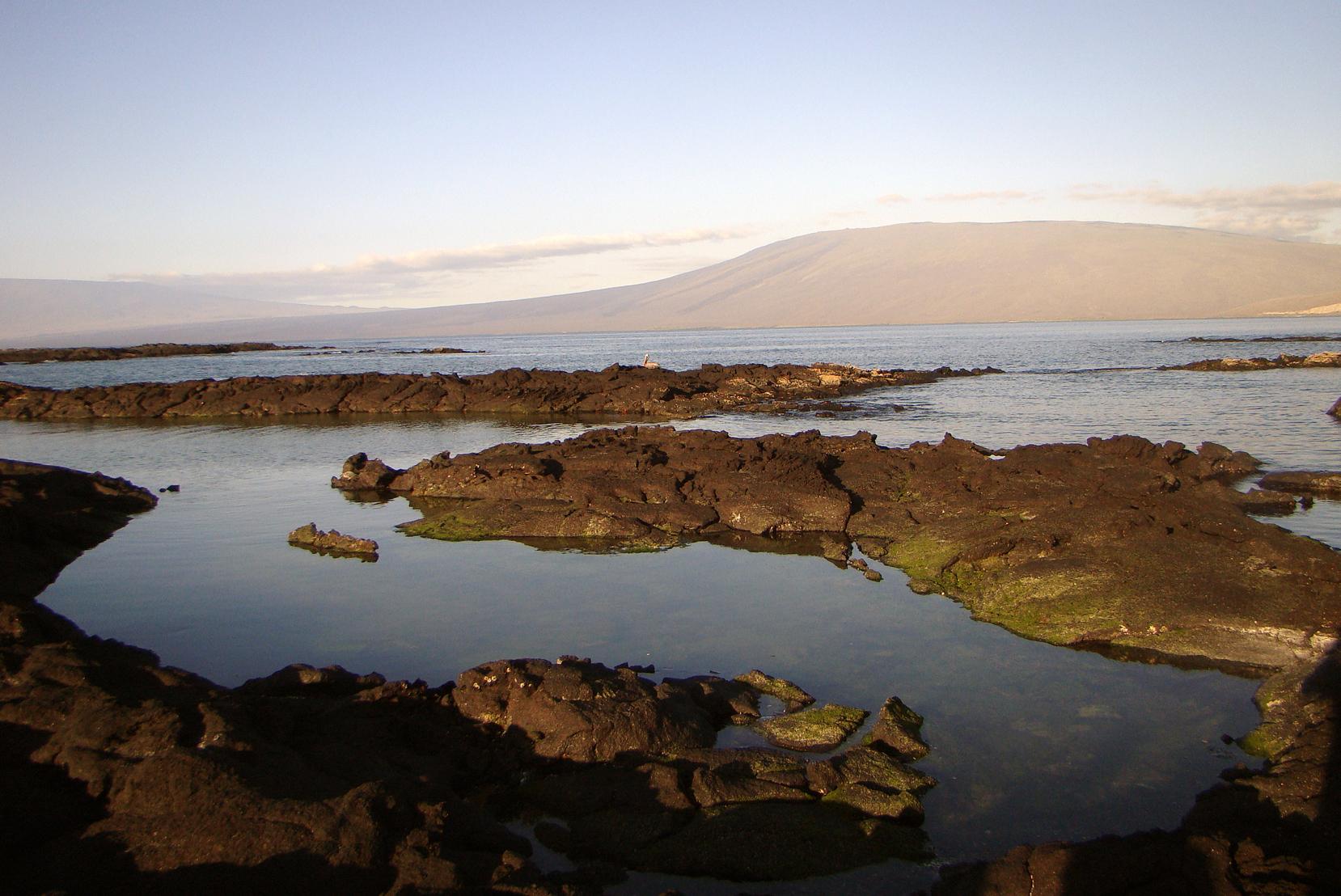 Isabela é a maior ilha do arqupélago de Galápagos