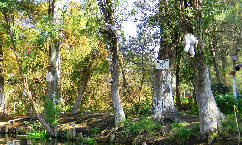 """<strong>12. Isla de las Muñecas, <a href=""""http://viajeaqui.abril.com.br/paises/mexico"""" rel=""""México"""" target=""""_self"""">México</a></strong>                        Se a primeira impressão é a que fica, essa curiosa floresta mexicana, cheia de bonecas penduradas em árvores, definitivamente não seria tão convidativa. O curioso hábito foi iniciado há cerca de cinquenta anos por Don Julian Santana, então único habitante da ilha. Na ocasião, ele teria encontrado o corpo de uma criança flutuando em um de seus canais, junto a uma boneca. Para homenagear a pobre menina e seu destino trágico, ele pendurou o brinquedo – o primeiro de milhares que ele espalharia no lugar, antes de se afogar no mesmo canal, em 2001. Se a floresta é encantada ou mal assombrada, nem mesmo os mexicanos conseguem definir: alguns acreditam que as bonecas são a personificação de demônios, enquanto outros alegam que elas protegem o local. Tire suas próprias conclusões."""