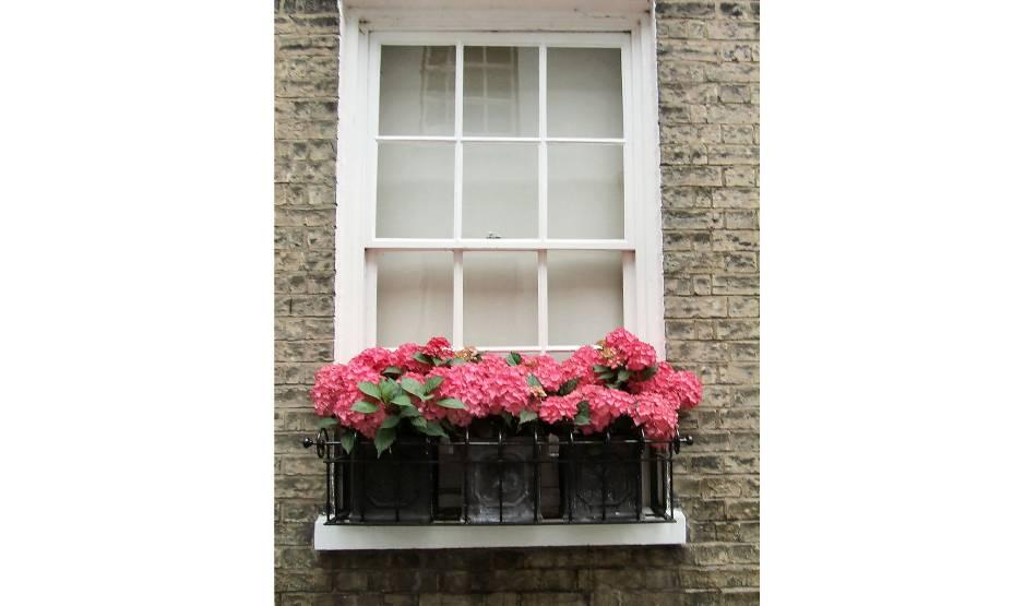 """<strong>Portugal Place, Cambridge, <a href=""""http://viajeaqui.abril.com.br/paises/reino-unido"""" rel=""""Reino Unido"""" target=""""_blank"""">Reino Unido</a></strong>            As florezinhas dão um toque simpático às janelas da cidade universitária de Cambridge<!--[if !supportLineBreakNewLine]--><!--[endif]-->"""