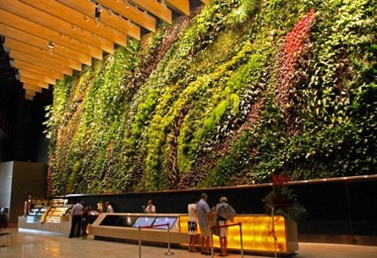 Jardim vertical de Patrick Blanc em Cingapura